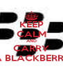KEEP CALM AND CARRY  A BLACKBERRY - Personalised Poster A4 size