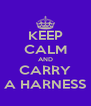 KEEP CALM AND CARRY A HARNESS - Personalised Poster A4 size