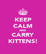 KEEP CALM AND CARRY KITTENS! - Personalised Poster A4 size