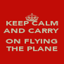 KEEP CALM AND CARRY  ON FLYING THE PLANE - Personalised Poster A4 size