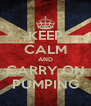 KEEP CALM AND CARRY ON PUMPING - Personalised Poster A4 size