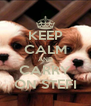 KEEP CALM AND CARRY ON STEFI - Personalised Poster A4 size