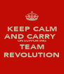 KEEP CALM AND CARRY  ON SUPPORTING TEAM REVOLUTION - Personalised Poster A4 size