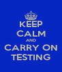 KEEP CALM AND CARRY ON TESTING - Personalised Poster A4 size