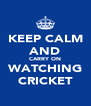 KEEP CALM AND CARRY ON WATCHING CRICKET - Personalised Poster A4 size