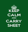 KEEP CALM AND CARRY SHEET - Personalised Poster A4 size
