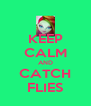KEEP CALM AND CATCH FLIES - Personalised Poster A4 size