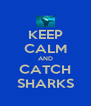 KEEP CALM AND CATCH SHARKS - Personalised Poster A4 size