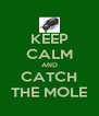 KEEP CALM AND CATCH THE MOLE - Personalised Poster A4 size
