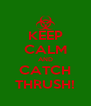 KEEP CALM AND CATCH THRUSH! - Personalised Poster A4 size