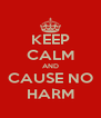 KEEP CALM AND CAUSE NO HARM - Personalised Poster A4 size