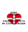 KEEP CALM AND CELEBRATE NYE IN COPENHAGEN - Personalised Poster A4 size
