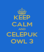 KEEP CALM AND CELEPUK OWL 3 - Personalised Poster A4 size