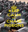 KEEP CALM AND CHASE PIGEONS - Personalised Poster A4 size