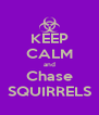 KEEP CALM and Chase SQUIRRELS - Personalised Poster A4 size