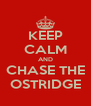 KEEP CALM AND CHASE THE OSTRIDGE - Personalised Poster A4 size