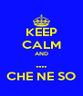 KEEP CALM AND .... CHE NE SO - Personalised Poster A4 size