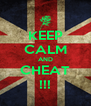 KEEP CALM AND CHEAT !!! - Personalised Poster A4 size