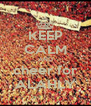 KEEP CALM AND cheer for ALAHLY - Personalised Poster A4 size