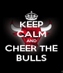 KEEP CALM AND CHEER THE BULLS - Personalised Poster A4 size