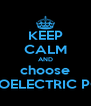 KEEP CALM AND choose HYDROELECTRIC POWER - Personalised Poster A4 size