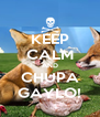 KEEP CALM AND CHUPA GAYLO! - Personalised Poster A4 size