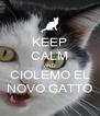 KEEP CALM AND CIOLEMO EL NOVO GATTO - Personalised Poster A4 size