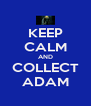 KEEP CALM AND COLLECT ADAM - Personalised Poster A4 size