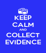 KEEP CALM AND COLLECT EVIDENCE - Personalised Poster A4 size