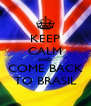 KEEP CALM AND COME BACK TO BRASIL - Personalised Poster A4 size