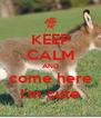 KEEP CALM AND come here I'm cute - Personalised Poster A4 size