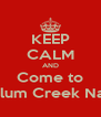 KEEP CALM AND Come to Alum Creek Naz - Personalised Poster A4 size