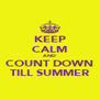 KEEP CALM AND COUNT DOWN TILL SUMMER - Personalised Poster A4 size
