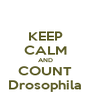 KEEP CALM AND COUNT Drosophila - Personalised Poster A4 size