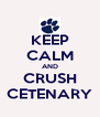 KEEP CALM AND CRUSH CETENARY - Personalised Poster A4 size