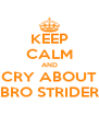 KEEP CALM AND CRY ABOUT BRO STRIDER - Personalised Poster A4 size