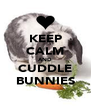 KEEP CALM AND CUDDLE BUNNIES - Personalised Poster A4 size