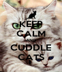 KEEP CALM AND CUDDLE CATS - Personalised Poster A4 size