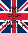KEEP CALM AND CUDDLE   CUTE CATS - Personalised Poster A4 size
