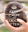 KEEP CALM AND CUDDLE OTTERS - Personalised Poster A4 size