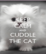 KEEP CALM AND CUDDLE THE CAT - Personalised Poster A4 size
