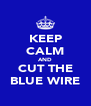 KEEP CALM AND CUT THE BLUE WIRE - Personalised Poster A4 size