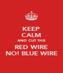 KEEP CALM AND CUT THE RED WIRE NO! BLUE WIRE - Personalised Poster A4 size