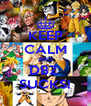 KEEP CALM AND DBZ  SUCKS! - Personalised Poster A4 size