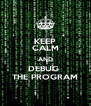 KEEP CALM AND DEBUG  THE PROGRAM - Personalised Poster A4 size