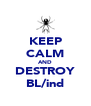 KEEP CALM AND DESTROY BL/ind - Personalised Poster A4 size