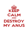 KEEP CALM AND DESTROY MY ANUS - Personalised Poster A4 size
