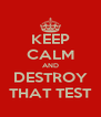 KEEP CALM AND DESTROY THAT TEST - Personalised Poster A4 size