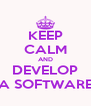 KEEP CALM AND DEVELOP A SOFTWARE - Personalised Poster A4 size