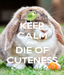 KEEP CALM AND DIE OF CUTENESS - Personalised Poster A4 size